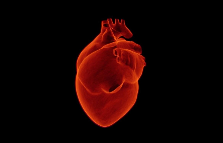 "Focus ""Coagulazione e sindrome coronarica acuta"""